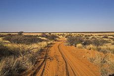 Strecke in Mabuasehube