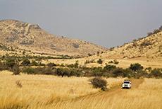 unterwegs im Pilanesberg