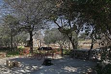Zeldafarm